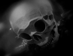 Perchance to Dream Skull